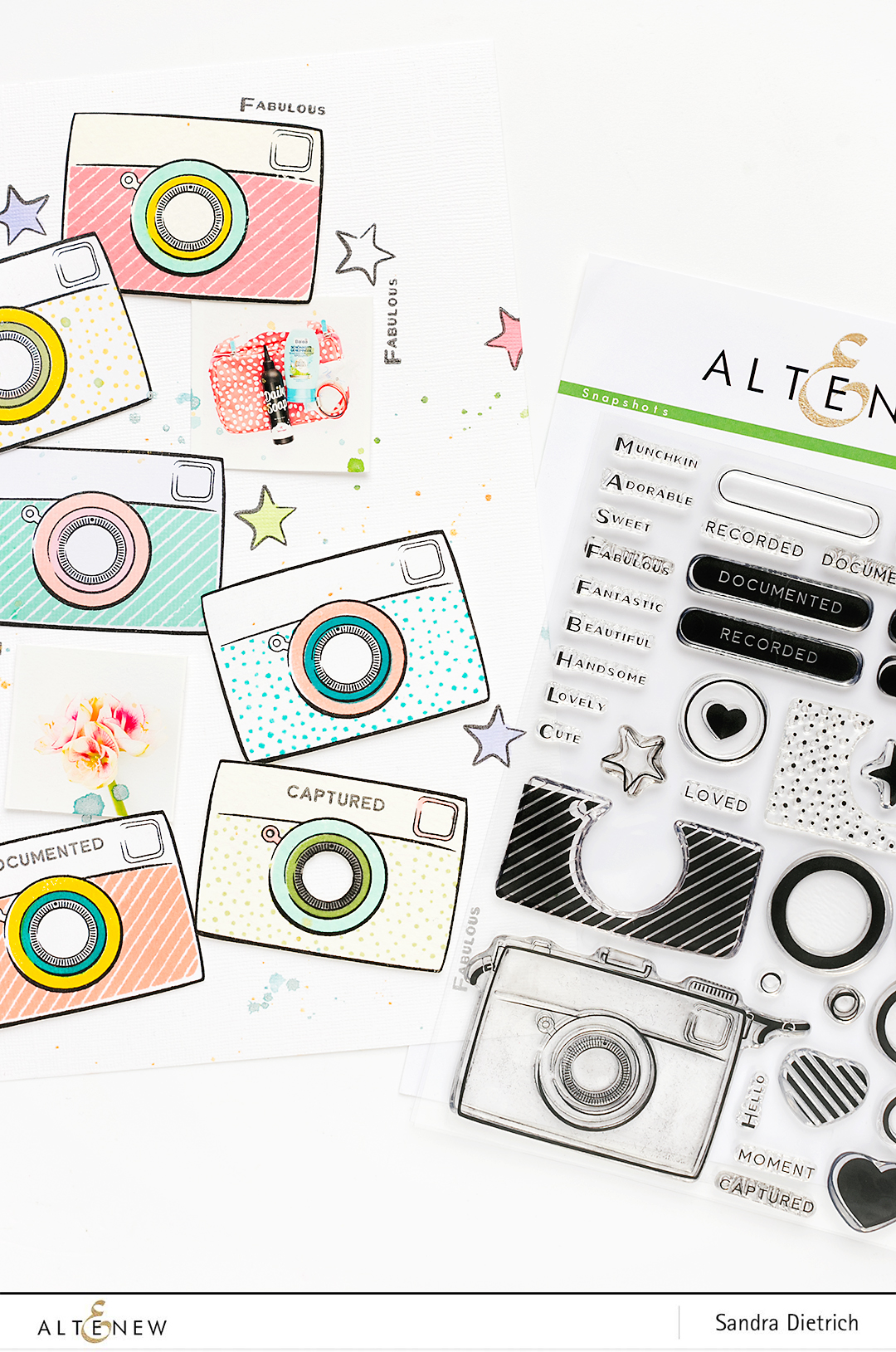 Snapshots Stamp Set @SandraDietrich for @Altenew